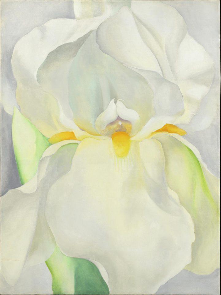 Georgia O'Keeffe, 'White Iris No. 7'