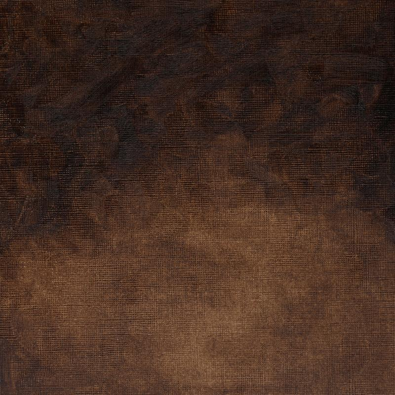 Spotlight on Vandyke brown